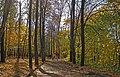 Nizhny Novgorod. Autumn view of Shveitsariya Park.jpg