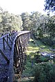 Noojee Trestle Bridge 005.JPG