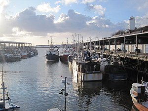 North Shields - Image: North Shields Fish Quay geograph.org.uk 1651356