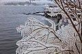 Ocean Spray and freezing temperatures ornament the Swedish coast - panoramio.jpg