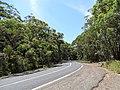 Old Pacific Highway (33414705924).jpg