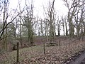 Old oak wood within grazing paddock - Feb 2012 - panoramio.jpg