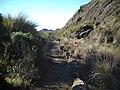 Old road to Prateleiras^ - panoramio.jpg