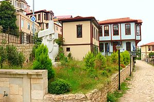 Ordu - Ordu and traditional houses
