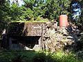 Orlické Záhoří, Černá Voda u Orlického Záhoří, R-S 90-I (rok 2010; 02).jpg