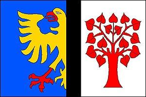 Orlová - Image: Orlová vlajka