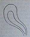 Ottův slovník naučný - obrázek č. 3096.JPG
