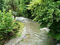 Ourse Bramevaque pont D925 amont.jpg