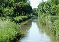 Oxford Canal near Rugby, Warwickshire - geograph.org.uk - 988913.jpg
