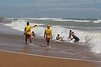 PALS Lifeguards on Sandspit Beach.jpg
