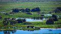 Pantanal Corumbá-MS 01.jpg