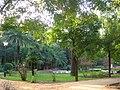 Parc de Maria Luisa (Séville).JPG