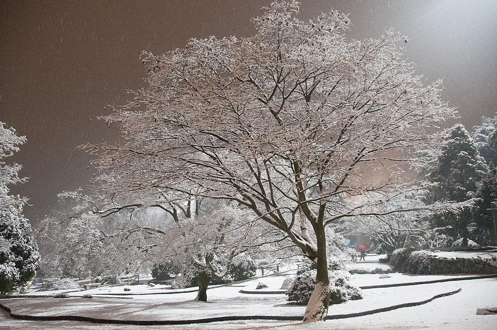 """Parc Valentino à Turin sous la neige - Photo de Uccio """"Uccio2"""" D'Ago"""