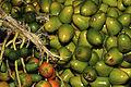 Parepoux fruit de Guyane Cl J Weber02 (23592825131).jpg