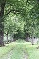 Park - panoramio (142).jpg