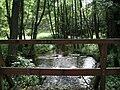 Park Narodowy Bory Tucholskie - Stara Piła (1).jpg