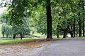 Park miejski im. H. Sienkiewicza we Włocławku1 N. Chylińska.JPG