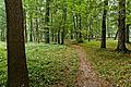 Park w zespole pałacowym Potockich, Krzeszowice, A-423 M 06.jpg