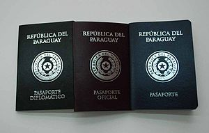 Paraguayan passport - Diplomatic, official and consular passports