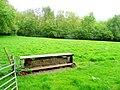 Pasture by Dreinos Wood - geograph.org.uk - 1346727.jpg