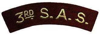 3rd Parachute Chasseur Regiment - Image: Patch de bras du 3e RCP