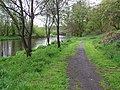Path and River, Omagh - geograph.org.uk - 1271000.jpg
