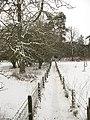 Path to Catwalk Wood - geograph.org.uk - 1627101.jpg