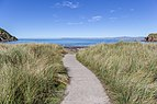 Path to Whites Beach, Marlborough Region, New Zealand.jpg