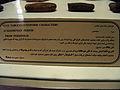 Persepolis 2007 Darafsh (32).JPG