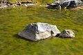 Peru - Salkantay Trek 054 - frozen pond (7339808106).jpg
