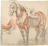 Peter Paul Rubens - Saddled Horse, c. 1615-1618 - Google Art Project.jpg