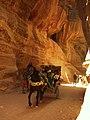 Petra - panoramio (15).jpg