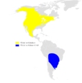 Petrochelidon pyrrhonota distribution map.png