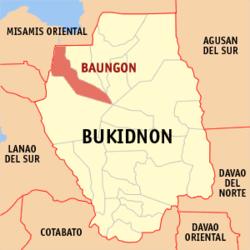 Baungon map