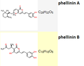 Phellinin a-B.png