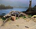Phytosaur Ghost Ranch.jpg