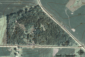 Pilot Mound State Forest Aerial Topo.png