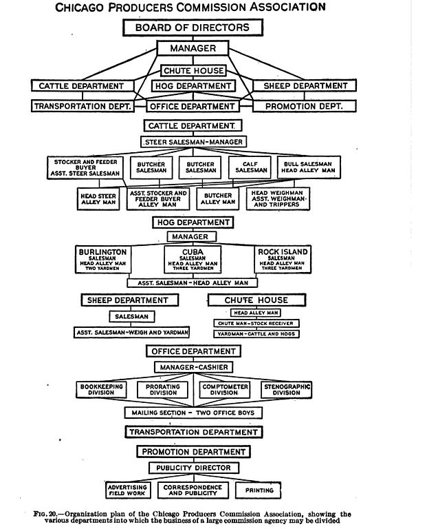 Organizational Chart For Marketing Department: Plan of Organization for National Livestock Producers ,Chart