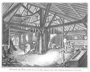 Forest glass - Forest glasshouse of eighteenth century