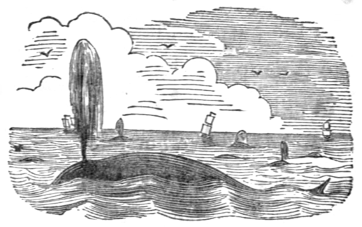 Poems of the Sea, 1850 - Whales