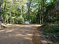 Police on a track in the Hambach forest 02.jpg