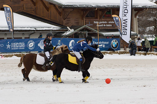 Polo Poney - 2014 Megève Polo Masters (3)