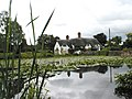 Pond and thatched cottage at Badger - geograph.org.uk - 716791.jpg