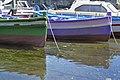 Porto turistico di Ognina Catania - Gommoni e Barche - Creative Commons by gnuckx - panoramio (33).jpg