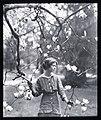 Portrait photograph of Edna St. Vincent Millay LOC agc.7a10216.jpg