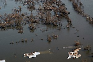 Flooding in Venice, Louisiana after Hurricane ...