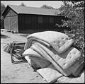Poston, Arizona. Mattresses no longer needed by block residents are piled in the middle of the bloc . . . - NARA - 539867.jpg