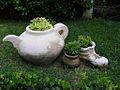 Pots in a garden.jpg