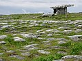 Poulnabrone Tomb and surrounding land - geograph.org.uk - 491420.jpg