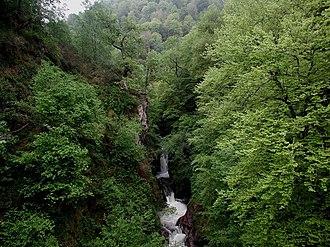 Saja (river) - Pozo del Amo reserve